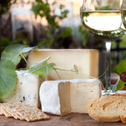 Hunter Valley Food Tour