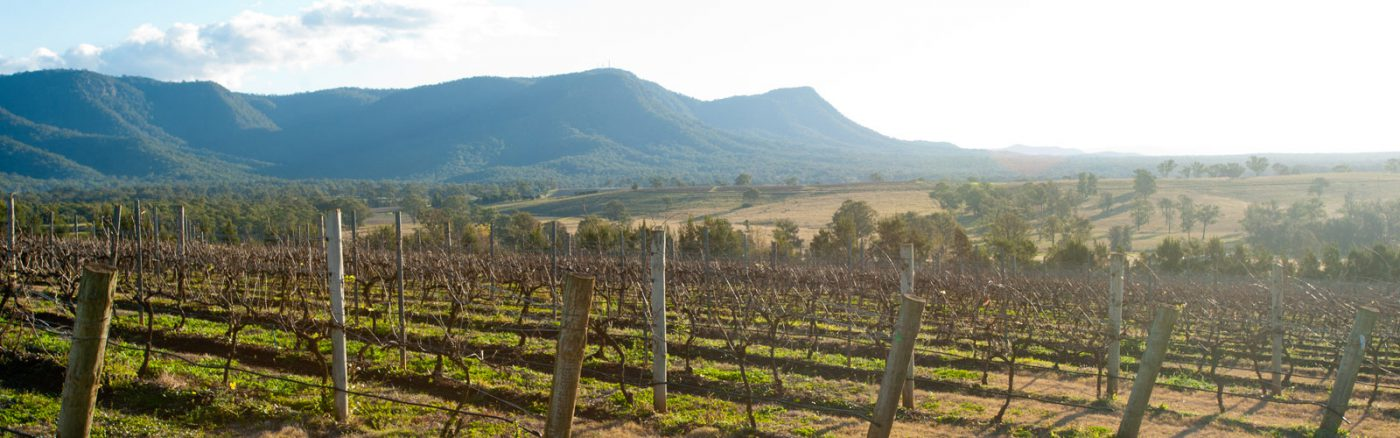 About the Hunter Valley